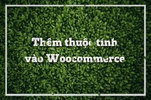 Cách thêm thuộc tính vào Woocommerce wordpress